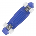 Skateboard Playlife Vinyl Blue