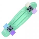 Skateboard Playlife Vinyl Mint